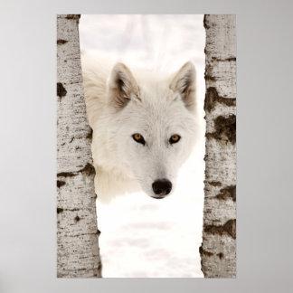 El lobo del invierno poster