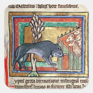 El lobo del ms Roy A fuera de una oveja dobla Calcomanías Cuadradass