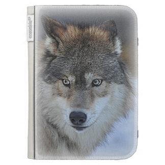 El lobo enciende la caja