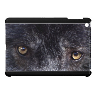 El lobo gris del macho alfa observa la foto de la iPad mini cobertura