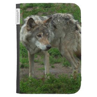 El lobo gris enciende la caja