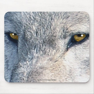 El lobo gris observa el arte Mousemat de la fauna Alfombrillas De Ratones