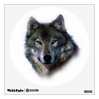 El lobo gris observa la etiqueta de la pared del vinilo