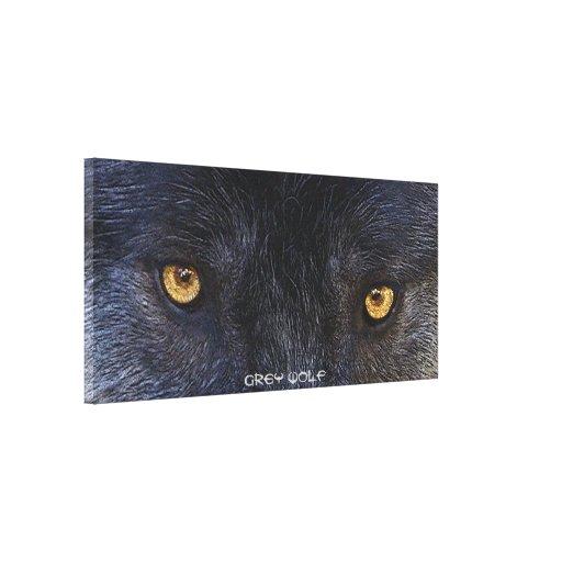 El lobo gris observa la impresión del arte de la l lienzo envuelto para galerias