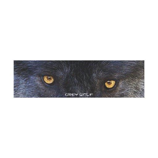 El lobo gris observa la impresión del arte del par lienzo envuelto para galerias