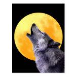 El lobo grita en la Luna Llena Tarjeta Postal