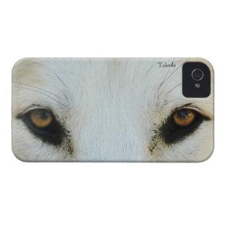 El lobo observa el caso universal de Barely There iPhone 4 Protectores