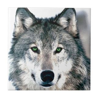 El lobo observa el estampado de animales salvaje d azulejo cuadrado pequeño