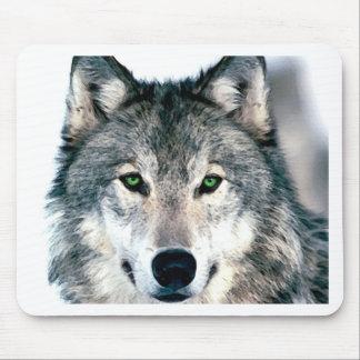 El lobo observa el estampado de animales salvaje d tapete de raton