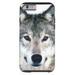 El lobo observa en animal salvaje de la naturaleza funda resistente iPhone 6