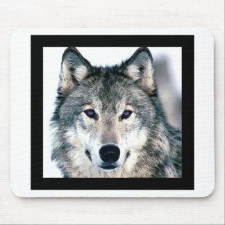 El lobo observa en estampado de animales salvaje d tapetes de ratón