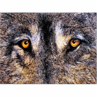 El lobo observa la escultura de la foto fotoescultura vertical
