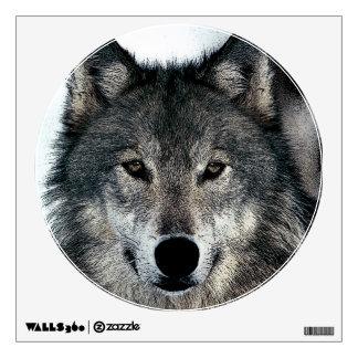 El lobo observa la etiqueta de la pared del vinilo