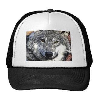 El lobo observa las ilustraciones gorros bordados