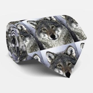 El lobo salvaje observa las ilustraciones corbata