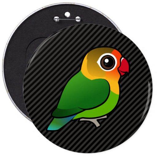 El Lovebird de Fischer Pin Redondo 15 Cm