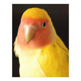 El Lovebird Membrete Personalizado