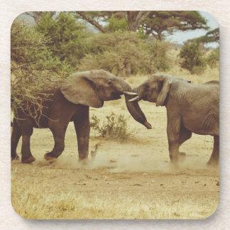 El luchar de los elefantes posavasos