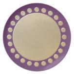 El lunar confinó la placa plato para fiesta
