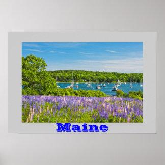 El Lupine florece cerca de la charca redonda Maine Posters