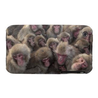 El macaque japonés (fuscata del Macaca) amontonó Case-Mate iPhone 3 Funda