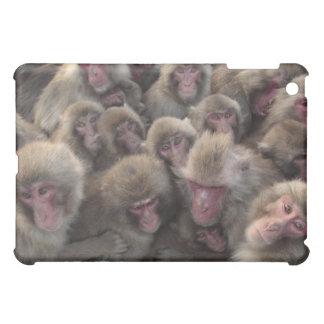 El macaque japonés (fuscata del Macaca) amontonó