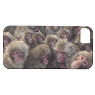 El macaque japonés (fuscata del Macaca) amontonó iPhone 5 Carcasas