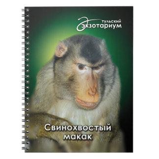 El macaque. meridional de la coleta libros de apuntes con espiral