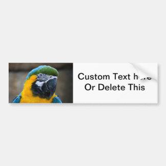 el macaw del azul y del oro repite mecánicamente l pegatina para auto