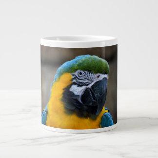 el macaw del azul y del oro repite mecánicamente taza de café grande