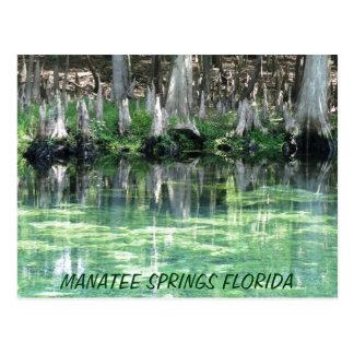 El Manatee salta postal de la Florida