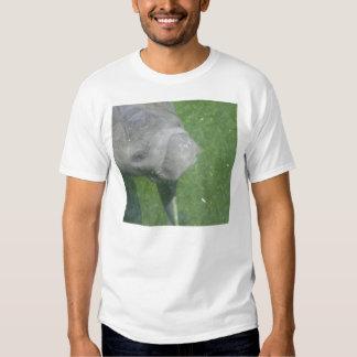El Manatee sonríe camiseta Poleras
