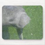 El Manatee sonríe mousepad Alfombrilla De Raton