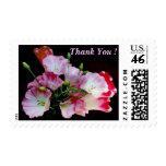 ¡El manojo de flores le agradece! Franqueo