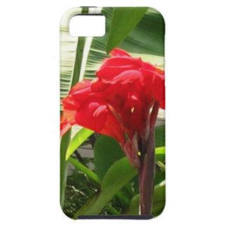 El manojo rojo FLORECE a revendedores de la iPhone 5 Fundas