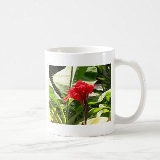 El manojo rojo FLORECE a revendedores de la Taza De Café