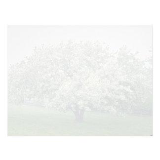 el manzano blanco de cangrejo, Quebec, Canadá Membrete