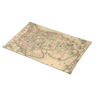 El mapa del vintage del Michigan Railroads (1876) Manteles