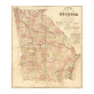 El mapa topográfico de Lloyd de Georgia (1864) Impresiones En Lona