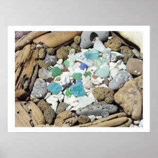 El mar de las rocas del fósil descasca el Driftwoo Posters