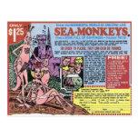 El mar Monkeys la postal