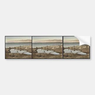 El mar muerto, II, Jericó, Tierra Santa, (es decir Pegatina De Parachoque