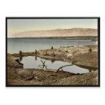 El mar muerto, II, Jericó, Tierra Santa, (es decir Tarjetas Postales