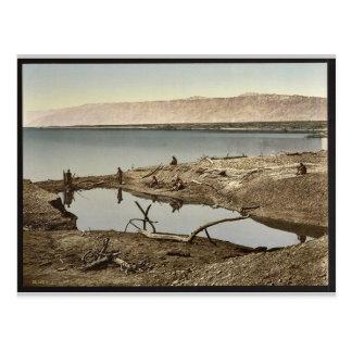 El mar muerto, II, Jericó, Tierra Santa, (es Tarjetas Postales
