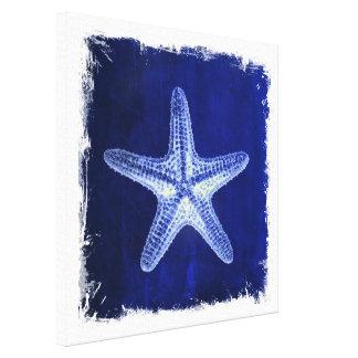 el mar náutico descasca estrellas de mar del azul impresiones en lienzo estiradas