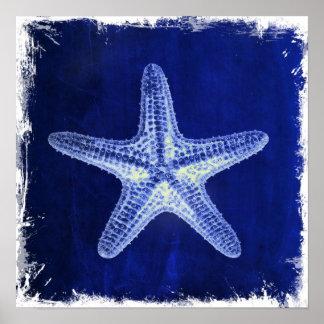 el mar náutico descasca estrellas de mar del azul impresiones