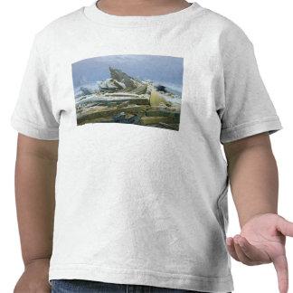El mar polar 1824 camisetas