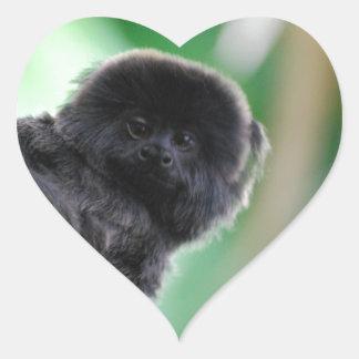 El Marmoset de Goeldi Pegatina En Forma De Corazón