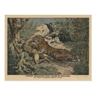 El marqués de Barthelemy hirió por un tigre Tarjetas Postales