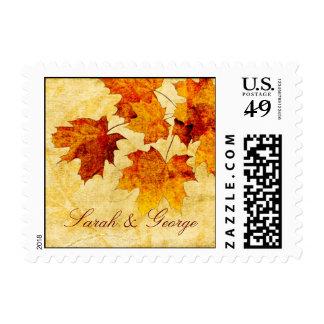 el marrón del otoño de la caída deja sellos del bo